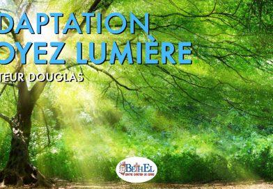 Adaptation, soyez lumière !